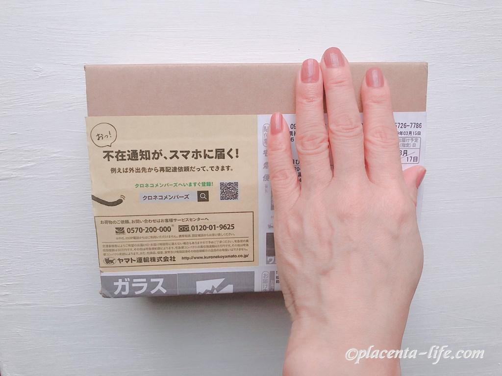 配送時の箱
